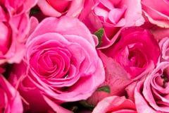 fermez-vous vers le haut du bonbon rose-clair sur le backgrou abstrait rose d'éclairage Photos libres de droits