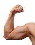 Fermez-vous vers le haut du bras de l'homme image stock