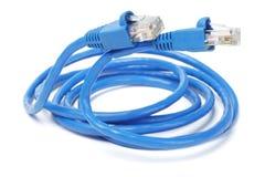 Fermez-vous vers le haut du câble et des fiches de réseau Photo libre de droits