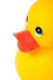 Fermez-vous vers le haut du canard en caoutchouc Image stock