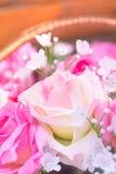 Fermez-vous vers le haut du concept doux d'amour de rose de rose Images libres de droits