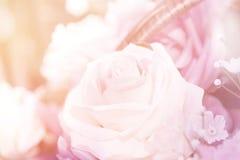 Fermez-vous vers le haut du concept doux d'amour de rose de rose Photographie stock