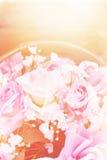 Fermez-vous vers le haut du concept doux d'amour de rose de rose Photo stock