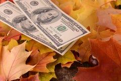 Fermez-vous vers le haut du détail des billets de banque d'argent des dollars Photographie stock libre de droits