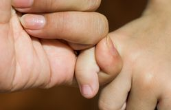 Fermez-vous vers le haut du doigt de mère tenant son doigt d'enfant tellement étroitement, son apparence que combien d'amour de e Image stock
