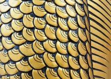 Fermez-vous vers le haut du dragon de pièce de texture Photo stock