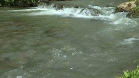Fermez-vous vers le haut du flot de l'eau E clips vidéos