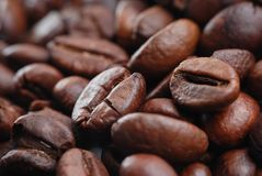 Fermez-vous vers le haut du grain de café Image stock