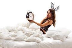 Lapin se situant dans le lit Image stock