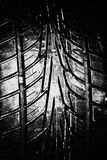 Fermez-vous vers le haut du pneu Image libre de droits