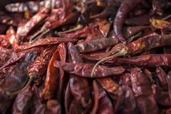 Fermez-vous vers le haut du poivre d'un rouge ardent de Ddy Photo stock