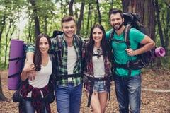 Fermez-vous vers le haut du portrait cultivé de quatre meilleurs amis heureux dans le bois Photo libre de droits