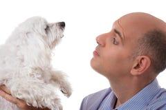 Fermez-vous vers le haut du portrait dans le profil de l'homme regardant au chien maltais, isola Photos stock
