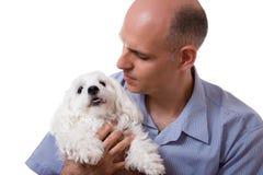 Fermez-vous vers le haut du portrait de l'homme regardant au chien maltais dans le studio, isola Photos stock
