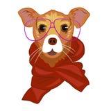 Fermez-vous vers le haut du portrait du chien en écharpe et verres rouges Image libre de droits