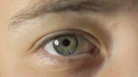 Fermez-vous vers le haut du projectile d'un oeil de womans clips vidéos