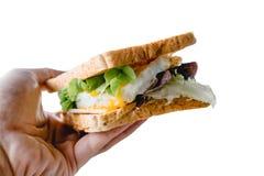 Fermez-vous vers le haut du sandwich à disposition d'isolement sur le fond blanc photo libre de droits