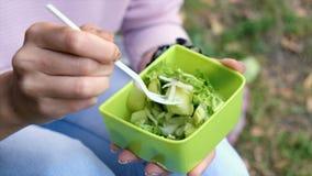 Fermez-vous vers le haut du tir d'une femme tenant un plat avec de la salade verte fraîche dans la belle lumière de matin Consomm clips vidéos