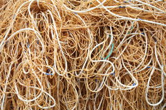 Fermez-vous vers le haut du tir de la corde Image libre de droits
