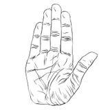 Fermi il segno della mano, le linee in bianco e nero dettagliate illustrati di vettore Immagine Stock