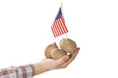 Fermier américain affichant fièrement ses collectes Image stock