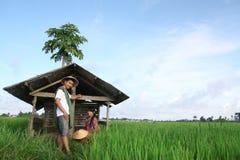 Fermier asiatique Photos libres de droits