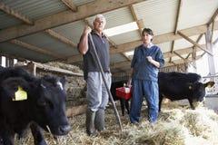 Fermier ayant la discussion avec le vétérinaire Images libres de droits