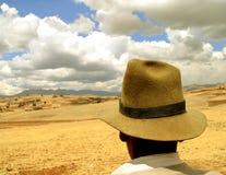 Fermier dans les Andes, Pérou Image libre de droits
