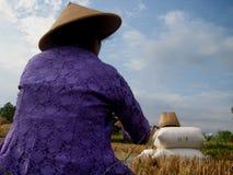 Fermier de Javanese Images libres de droits