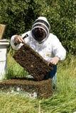 Fermier de miel Photos libres de droits