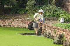 Fermier du Vietnam cherchant l'eau Image libre de droits