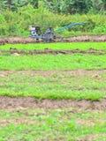 fermiers Images libres de droits