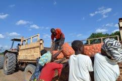 Fermiers africains Photo libre de droits