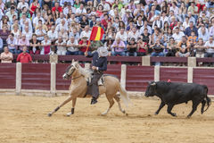 Fermin Bohorquez, bullfighter on horseback spanish, Ubeda, Jaen, Stock Photo