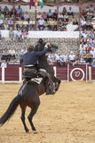 Fermin Bohorquez, bullfighter on horseback spanish, Ubeda, Jaen, Royalty Free Stock Images