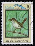 Ferminia-cerverai und Karte von Kuba, circa 1983 Stockbild