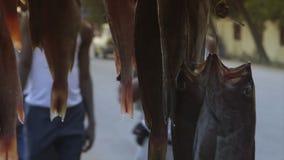 Fermo del pesce di clupeid venduto sul marciapiede, Conacry archivi video