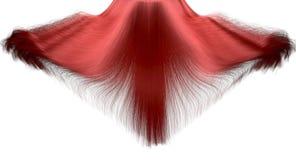 Fermo immagine di caduta dei capelli Immagini Stock