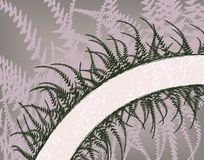 Fern arc. Editable vector text banner with background as a separate element Stock Photo