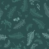 Fern and berry silhouettes. Background Stock Photo