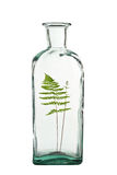 Fern in bottle Royalty Free Stock Photography