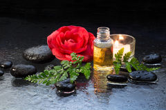 Fern, candle, oil and black stones. Fern,candle, oil and black stones for massage royalty free stock images