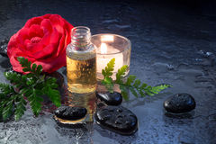 Fern, candle, oil and black stones closeup. Fern,candle, oil and black stones for massage royalty free stock images