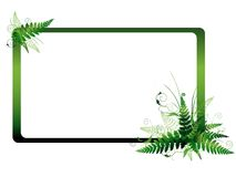 Fern frame. Illustration of the fern frame with copyspace for your text Royalty Free Stock Photo
