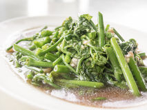 Fern Fried Vegetables in oyster sauce. Bangkok, Thailand - Aug 5, 2014 : Fern Fried Vegetables in oyster sauce Stock Photography