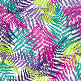 Fern frond seamless pattern Stock Photos