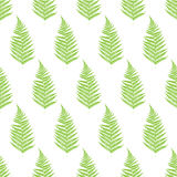 Fern frond silhouettes seamless pattern. Royalty Free Stock Photography
