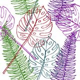 Fern Frond and Split Philodendrom leaves. Fern Frond and Split Philodendrom colorful leaves, seamless pattern design, hand drawn doodle on white background Royalty Free Stock Photography