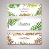 Fern invitation design vector set. Nature design. Stock Photo
