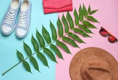 Fern leaf, sneakers, sunglasses, purse, hat on a colored pastel background. Women& x27;s accessories, botanical style, top view. Minimalism royalty free stock image